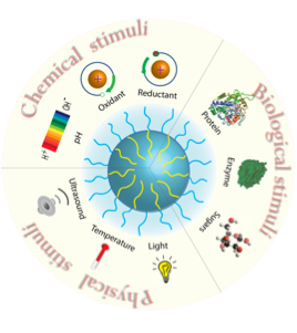 "Zhuang, J.; Gordon, M.; Ventura, J.; Li, L. Thayumanavan, S. ""Multi-Stimuli Responsive Macromolecules and Their Assemblies"" Chem. Soc. Rev."